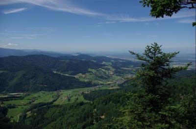 The Black Forest and Climate Change